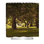 Park By The Rivers Shower Curtain