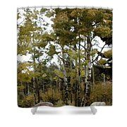 Park It There Shower Curtain