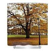 Park Life Shower Curtain