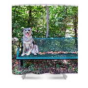 Park Pal Shower Curtain