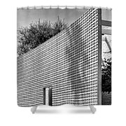 Parker Shadow Palm Springs Shower Curtain by William Dey