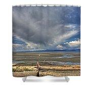 Parksville Beach - Low Tide Shower Curtain