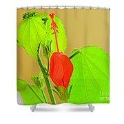 Parlor Maple Flower Shower Curtain
