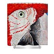 Parrot Shower Curtain