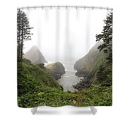 Parrot Rock In The Fog Shower Curtain