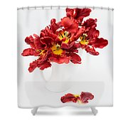 Parrot Tulips In A Milk Jug Shower Curtain