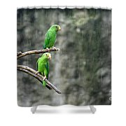 Parrots In The Rain Shower Curtain