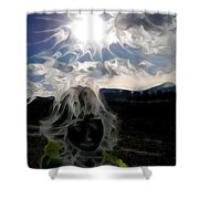 Participation - Elements - Energy Shower Curtain