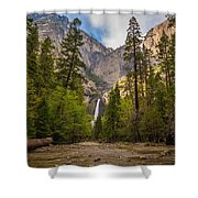 Parting Trees Shower Curtain