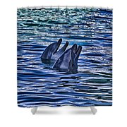 Partners In Blue Shower Curtain