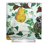 Partridge And  Pears  Shower Curtain