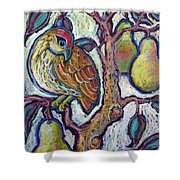 Partridge In A Pear Tree 1 Shower Curtain