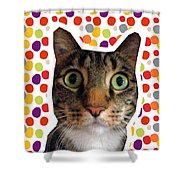 Party Animal - Smaller Cat With Confetti Shower Curtain
