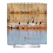 Party Island Shower Curtain