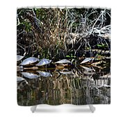 Party On A Log Shower Curtain