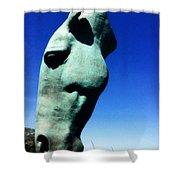 Parx Horse Shower Curtain
