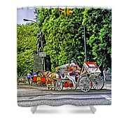 Passenger Cars Only - Central Park Shower Curtain