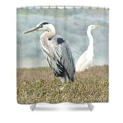 Passing In Opposite Directions Shower Curtain