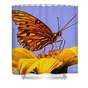 Passion Butterfly On The Mexican Sunflower Shower Curtain