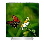 Passion Butterfly Painted Shower Curtain