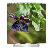 Passion Flower - Ruby Glow Shower Curtain