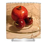 Passion Fruit And Pomegranate Shower Curtain