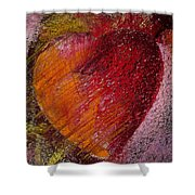 Passion Heart Shower Curtain