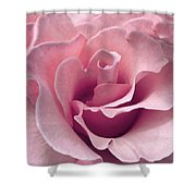 Passion Pink Rose Flower Shower Curtain