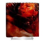 Passionate Dreams.. Shower Curtain