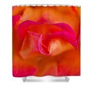 Passion's Flower Shower Curtain
