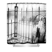 Past Life Shower Curtain