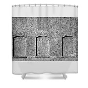 Past Windows Shower Curtain