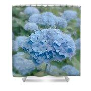 Pastel Blue Hydrangea Shower Curtain