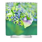 Pastel Buds Shower Curtain