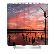 Pastel Morn Shower Curtain
