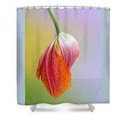 Pastel Petal Shower Curtain