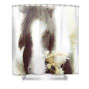 Pastel Pony Shower Curtain