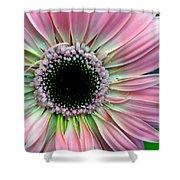 Pastel Power Shower Curtain