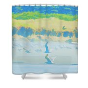 Pastel Wings Shower Curtain