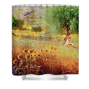 Pastelero Spain Shower Curtain