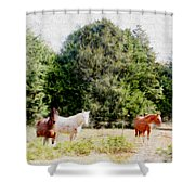 Pasture For Three Shower Curtain