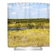 Pasture Horse 14414 Shower Curtain