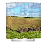 Pasture Land - Dorset Shower Curtain