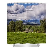 Pastures And Clouds  Shower Curtain
