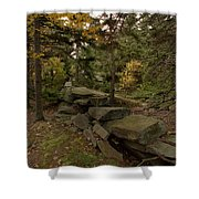 Pastures Past Shower Curtain