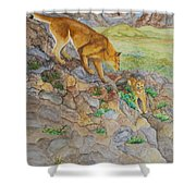 Patagonia Pumas Shower Curtain