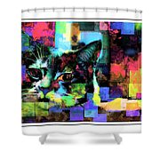 Patchwork Kitty Shower Curtain