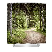 Path In Green Forest Shower Curtain by Elena Elisseeva