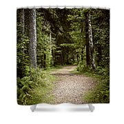 Path In Old Forest Shower Curtain