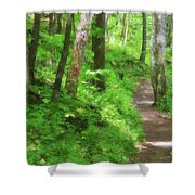 Path In The Forest Shower Curtain by Jill Lang